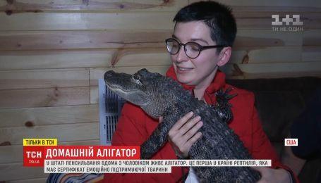 Аллигатор, что спасает от депрессии: 10-килограммовая рептилия стала домашним любимцем американца