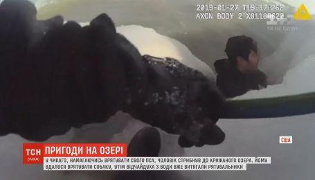 В Чикаго мужчина рискнул своей жизнью ради спасения своего пса