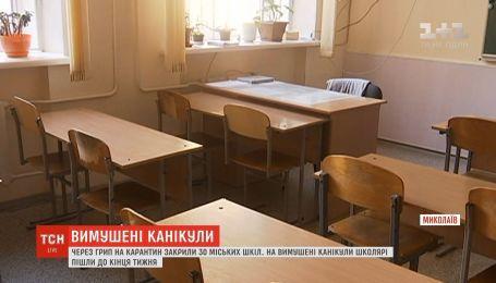 В Николаеве закрыли школы на карантин из-за гриппа