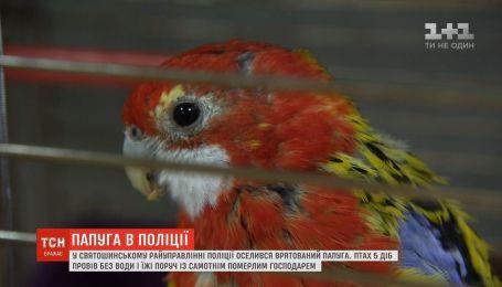 В столице полицейские взяли на работу попугая