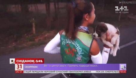 Женщина-марафонец на дистанции подобрала щенка и вместе с ним добежала до финиша