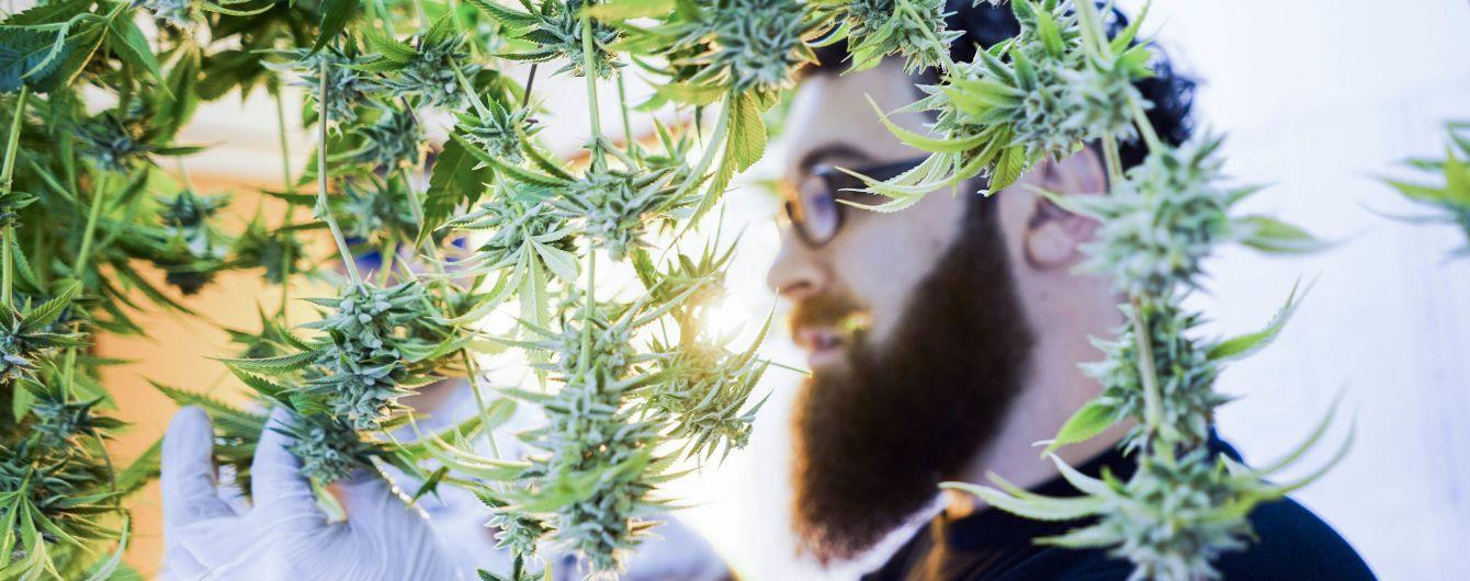 Эффект лечебной марихуаны варадеро купить марихуану