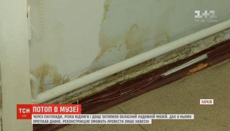 В Харькове из-за оттепели затопило областной художественный музей