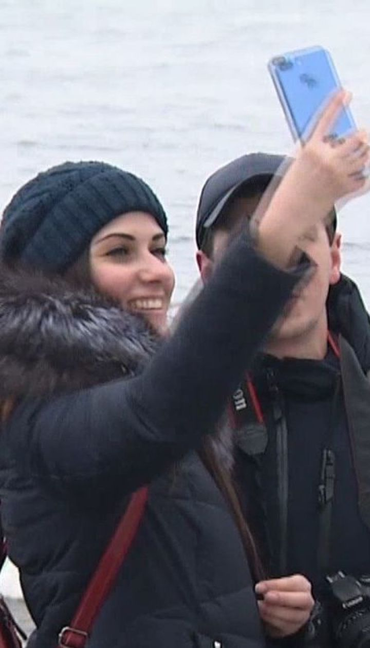 Понад півсотні лебедів обрали для зимівлі береги Дніпра на столичній Оболоні