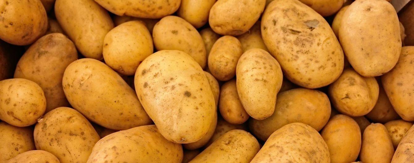 В последний месяц зимы картофель начал дешеветь