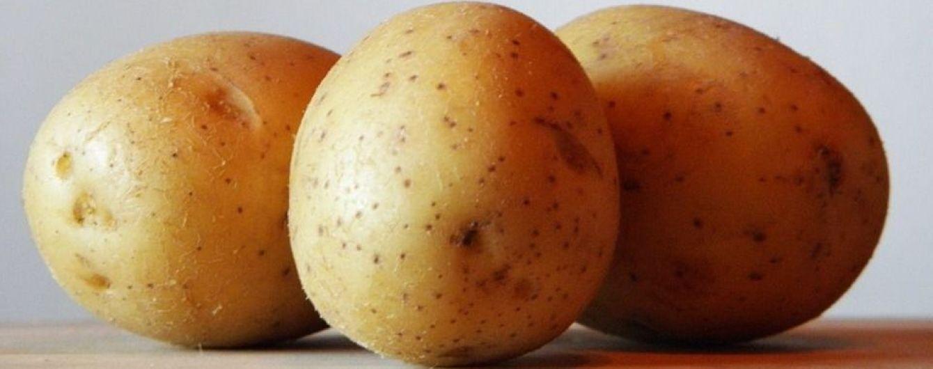 На украинских рынках рекордные цены на картофель. До конца года стоимость овощей вырастет на 20%