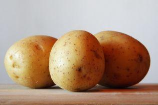 В этом году в Украину импортируют рекордное количество картофеля