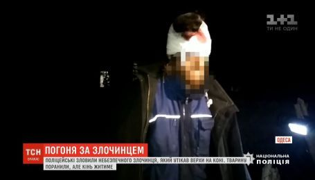 Одеські поліцейські зловили небезпечного злочинця, який тікав від них верхи на коні