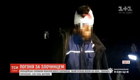 Одесские полицейские поймали опасного преступника, который убегал от них верхом на лошади