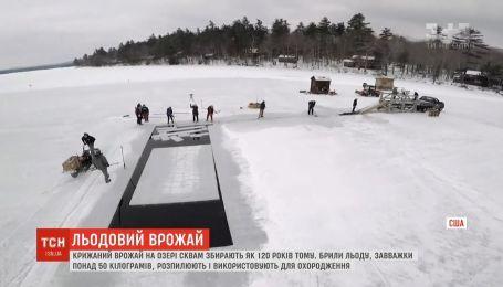 В США на замерзших озерах собирают ледяной урожай