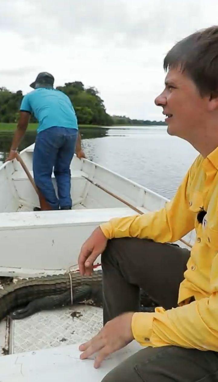 """В новом выпуске """"Мира наизнанку"""" Дмитрий Комаров будет охотиться на гигантскую рыбу"""