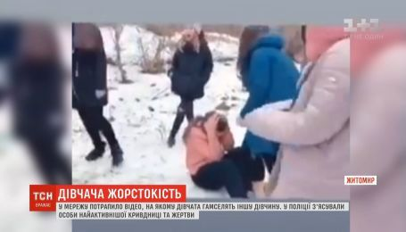 Дівчача жорстокість: у Житомирі підлітки гамселили школярку на камеру