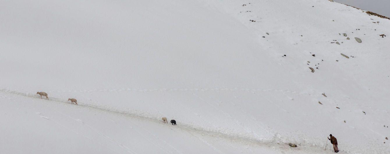 В индийских Гималаях сошла лавина, есть погибшие