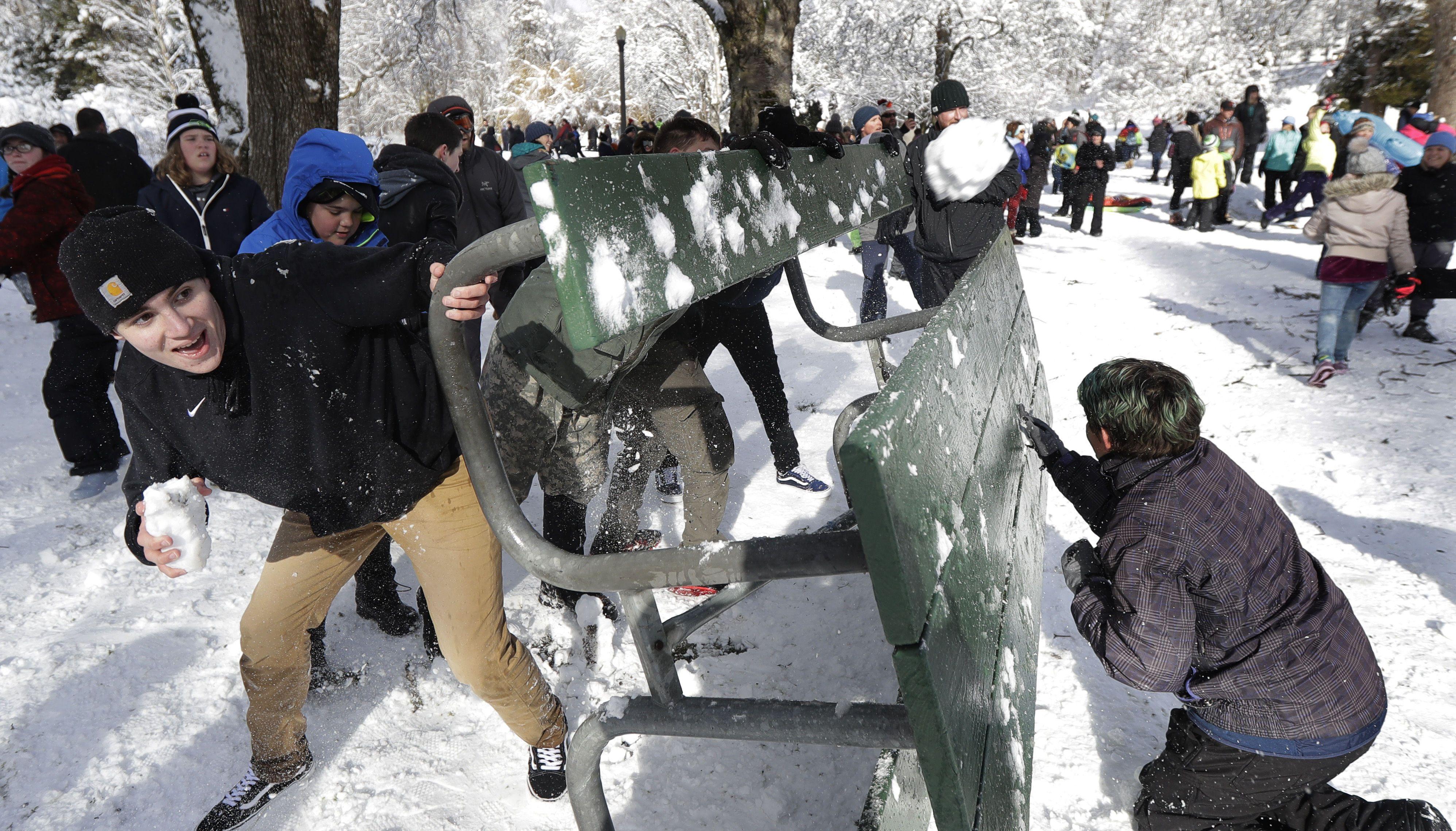 битва сніжками, сша, сніг