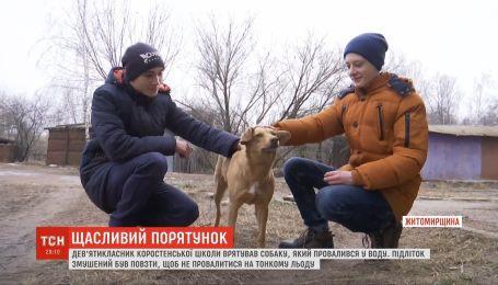 В Житомире подросток спас собаку, провалившегося под лед