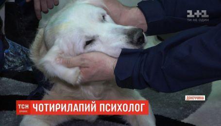 На Донеччині працює собака-психолог для пожежників