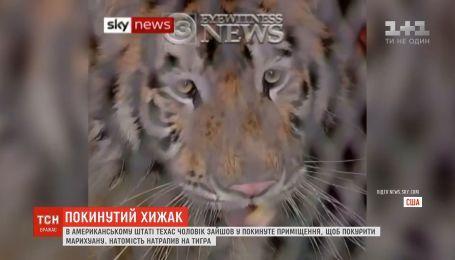 У Техасі чоловік випадково натрапив на тигра