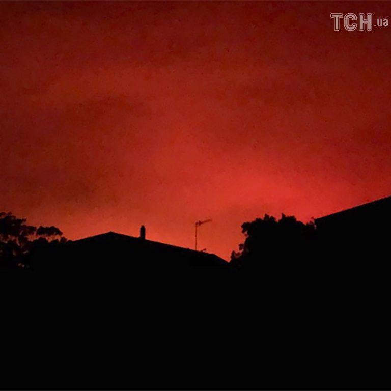 У Росії не вщухають лісові пожежі: вигоріли понад 60 тисяч гектарів насаджень та будівлі