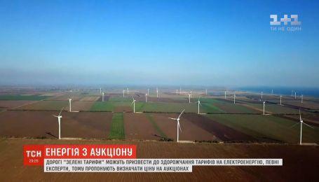 """В Верховной Раде хотят ввести аукционы на """"зеленую энергетику"""""""