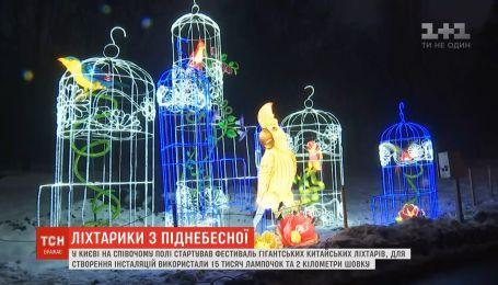 Величезні фламінго, жаби та папуги: на Співочому полі засвітили гігантські китайські ліхтарі