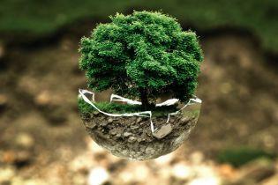 Земля значно позеленіла за останні 20 років. Розповідаємо, як це сталося і до чого тут Китай