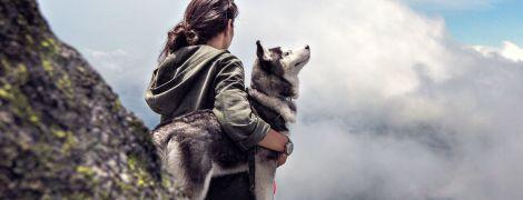 В Испании нашли массовое захоронение собак – древние люди хотели уйти с четвероногими в загробную жизнь