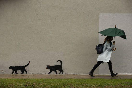 Погода на п'ятницю: в Україні обіцяють дощі, але буде тепло