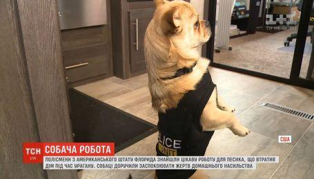 В штате Флорида полицейский пес отвечает за связи с общественностью