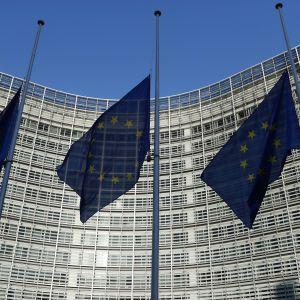 ЄС запропонував Україні допомогу у написанні законопроекту про покарання за незаконне збагачення