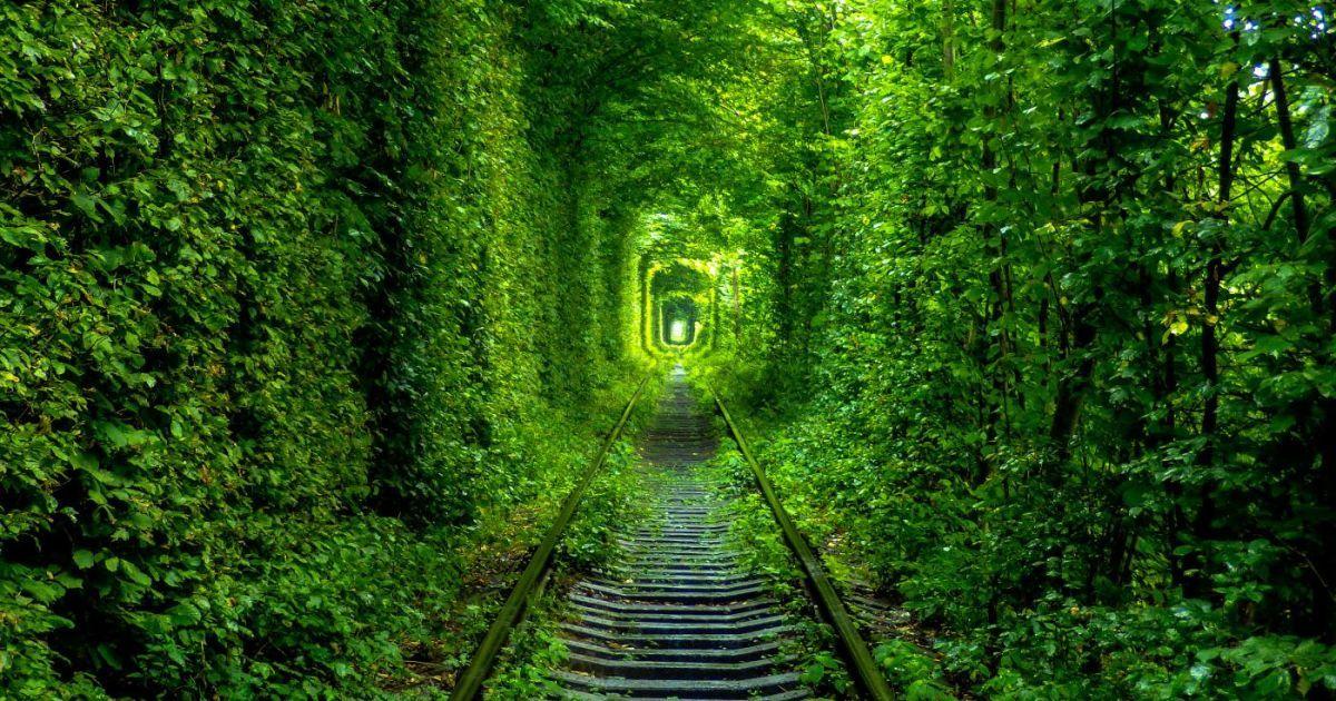 Украинский 'Тоннель любви' стал одним из самых романтичных мест в мире