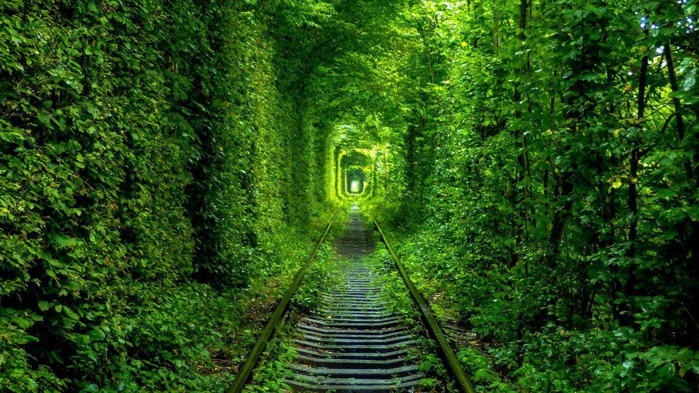 Тунель кохання (Клевань, Рівне)