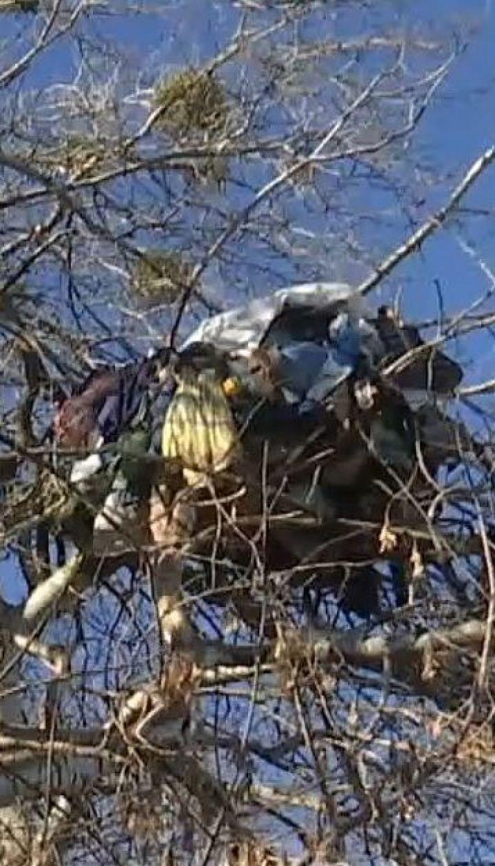Київський безхатько змайстрував собі дім на дереві біля озера