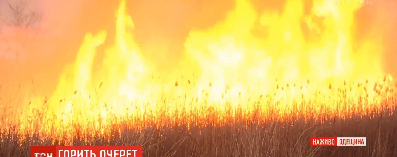 Під Одесою палають поля поблизу нафтопереробного заводу