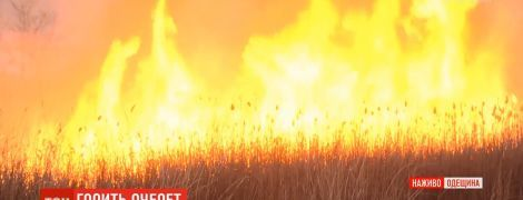 Под Одессой горят поля вблизи нефтеперерабатывающего завода