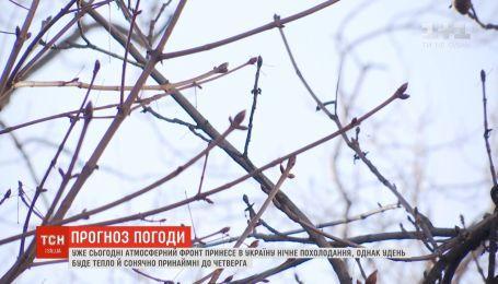 Сонячно й тепло: в Україні лютий б'є температурні рекорди