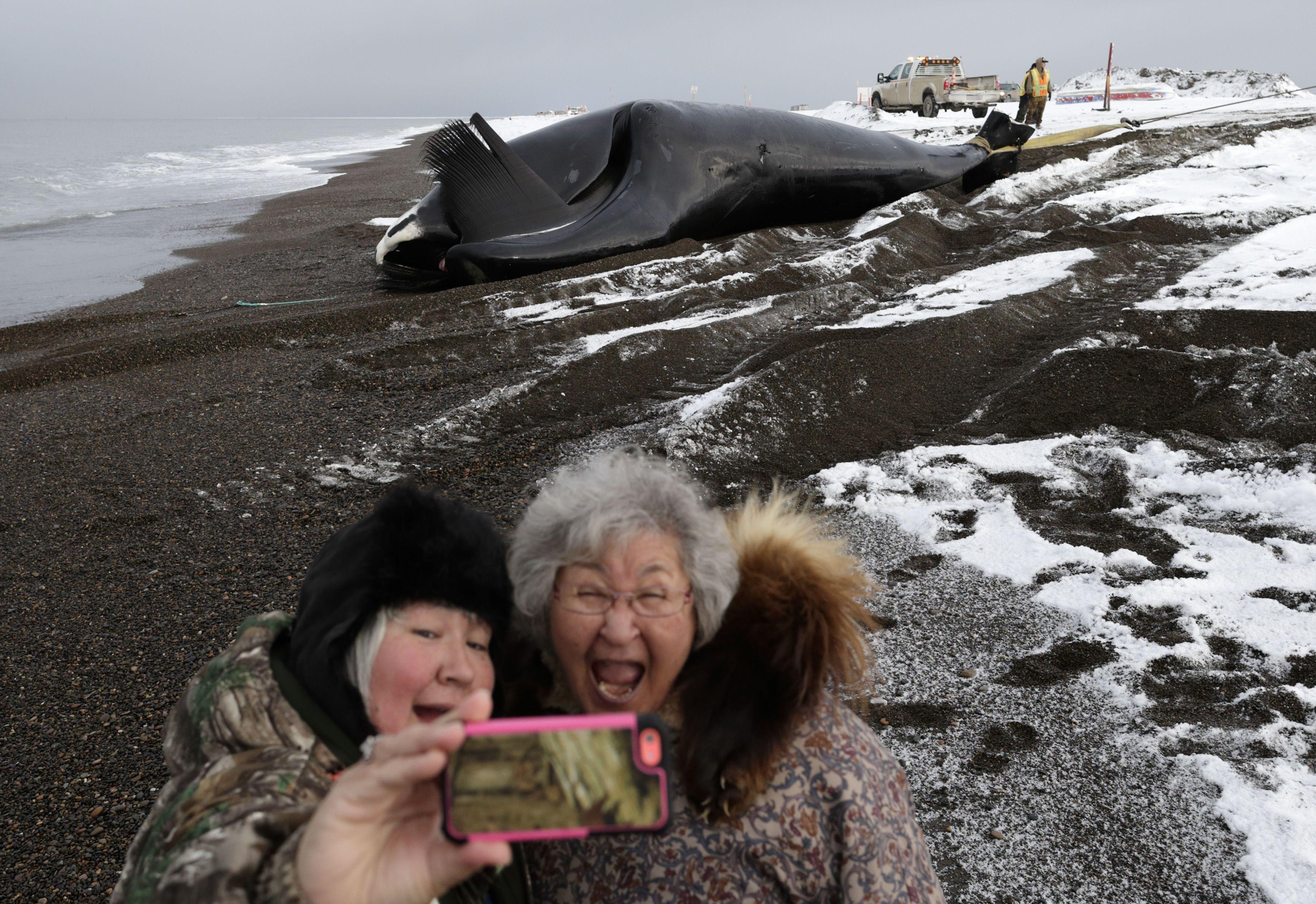 китобійний промисел
