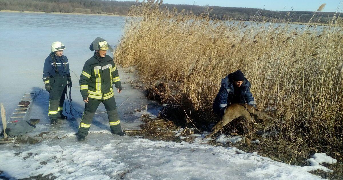 @ Главное управление ГСЧС Украины в Донецкой области