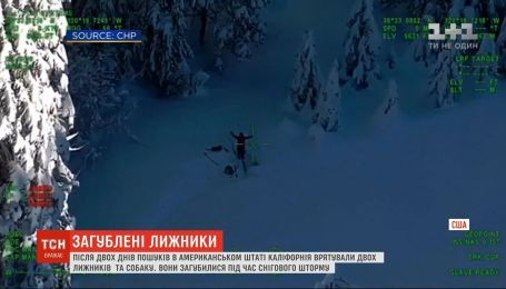 После двух дней поисков в Калифорнии спасли двух лыжников и собаку