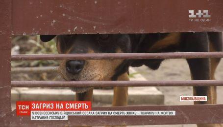В Николаевской области бойцовская собака насмерть загрызла женщину