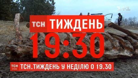 Кто прикрывает нелегальные свалки мертвых животных в Тернополе - смотрите в ТСН.Тиждень