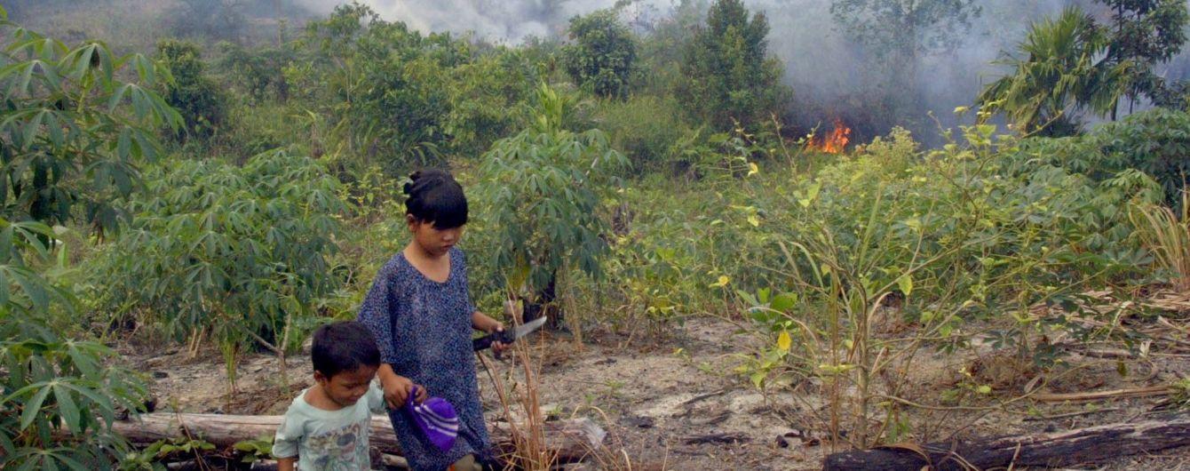 В Індонезії через масові лісові пожежі у 90-х ціле покоління виросло нижчим - науковці