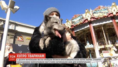 """""""Шуба - это кладбище животных"""": активисты провели антимеховые митинги"""