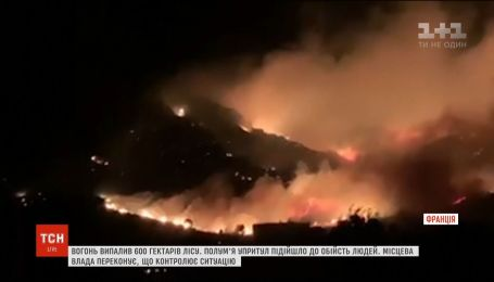 На острові Корсика спалахнули масштабні лісові пожежі