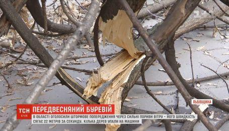Предвесняний буревій: на Львівщині оголосили штормове попередження