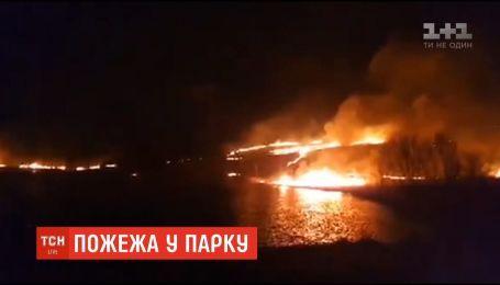 Неизвестные подожгли сухую траву в парке Черновцов