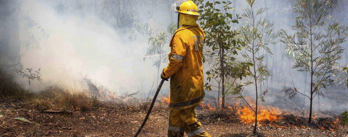 Сожженные дома и Национальный парк в огне. В Австралии бушуют сокрушительные лесные пожары