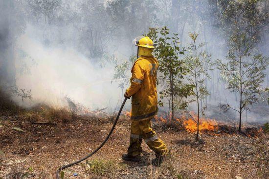 Спалені будинки та Національний парк у вогні. В Австралії вирують нищівні лісові пожежі
