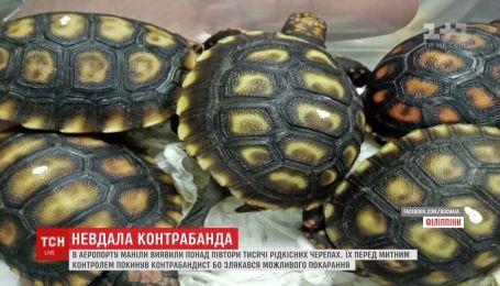 В аеропорту столиці Філіппін виявили чотири валізи, наповнені черепахами рідкісних видів