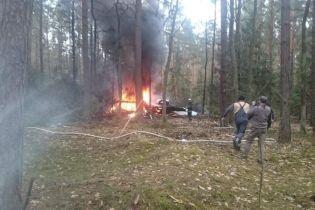 У Польщі розбився військовий літак Міг-29