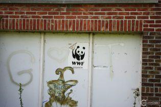 WWF финансирует бойцов, которые убивают и пытают браконьеров и мирных людей – шок-расследование BuzzFeed